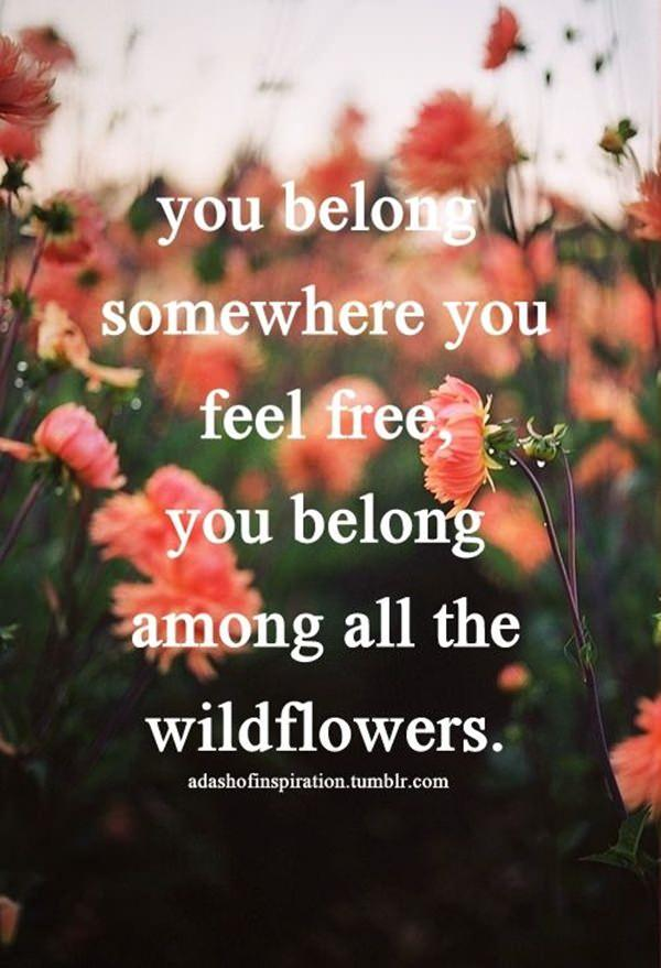 85 Most Famous Hippie Quotes That Tell About Freedom And Love
